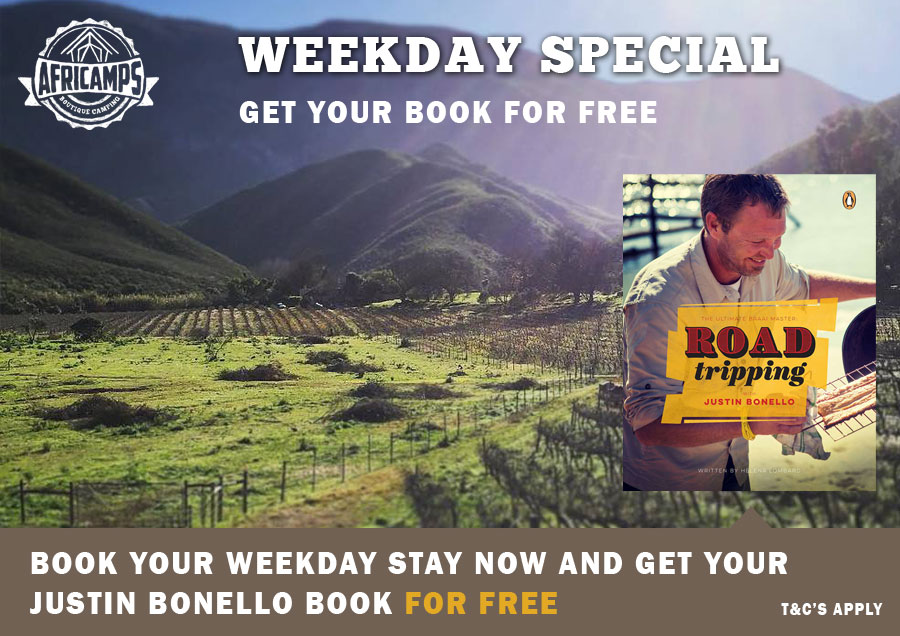 midweek-book-special-website