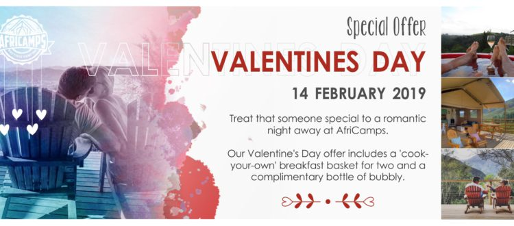 Valentines Day Africamps