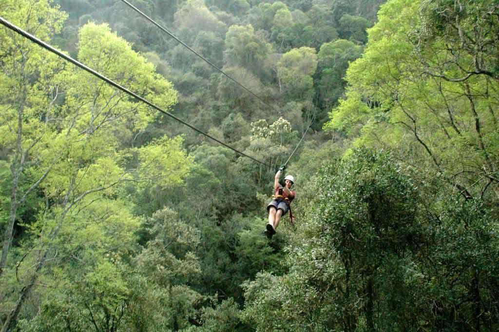 Gowan Valley Midlands Karkloof Canopy